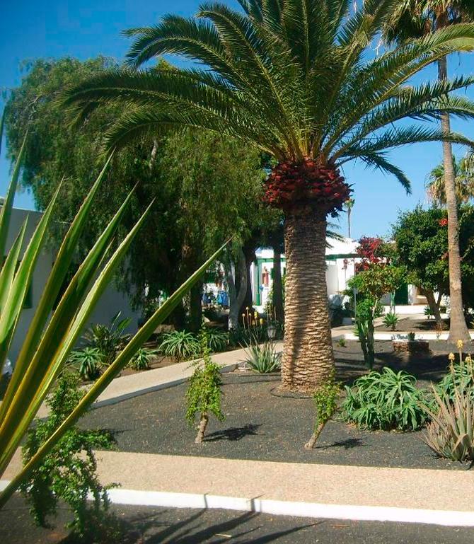 30.000 m² de jardines